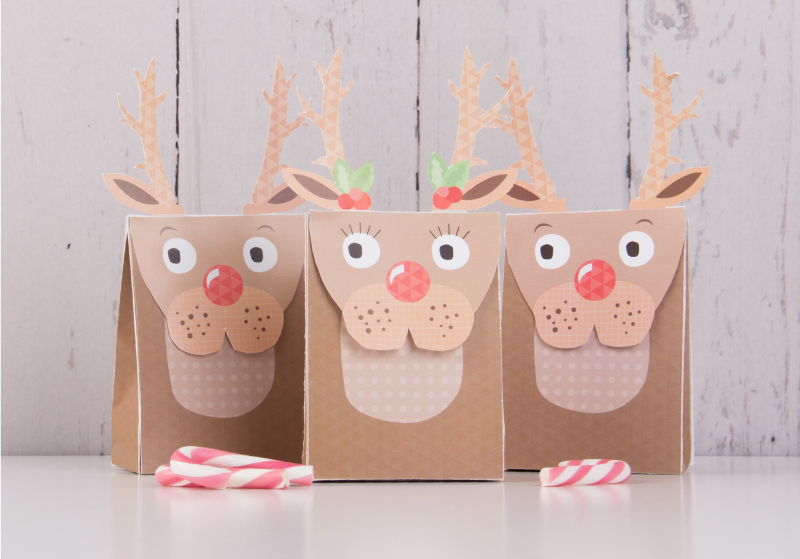 Reindeer gift bag.jpeg