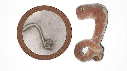 Ebola stuffed toy