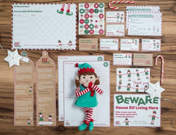 christmas-themed-gifts-elf-for-christmas