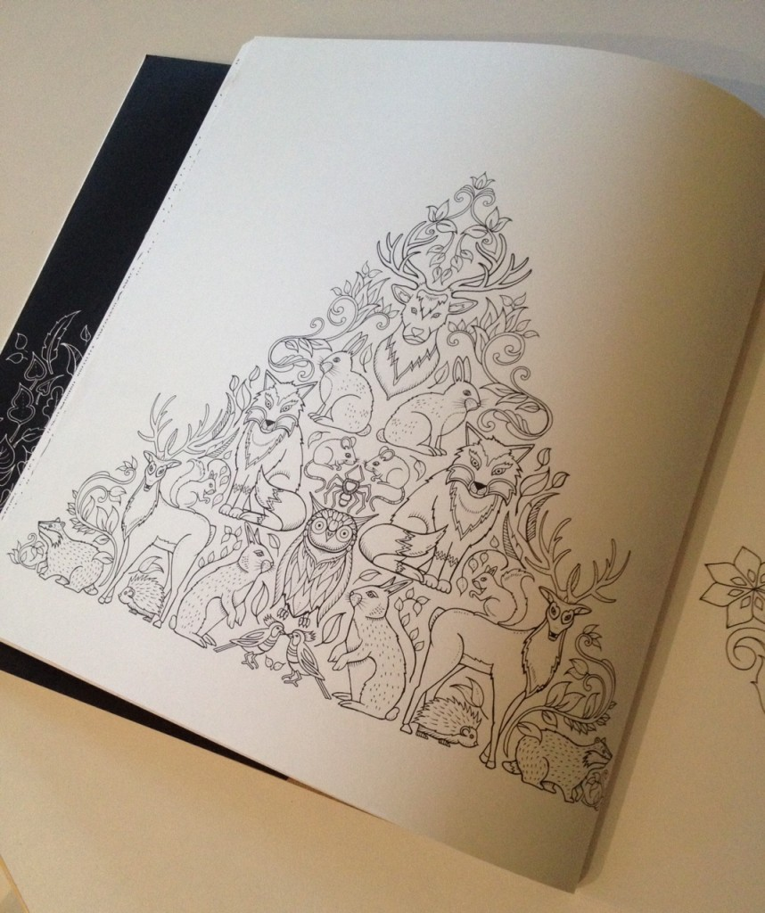 Enchanted Forest colouring - Gift Grapevine kid's book review