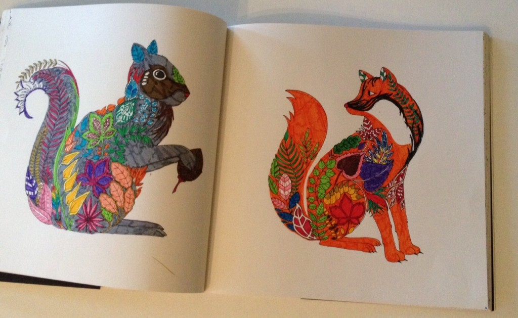 Enchanted Forest colouring in by Miss L - Gift Grapevine kid's book review