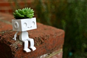 Robot succulent holder