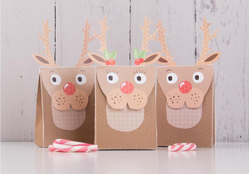 Reindeer gift bag.jpeg